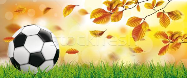 Otono follaje hierba fútbol bokeh eps Foto stock © limbi007