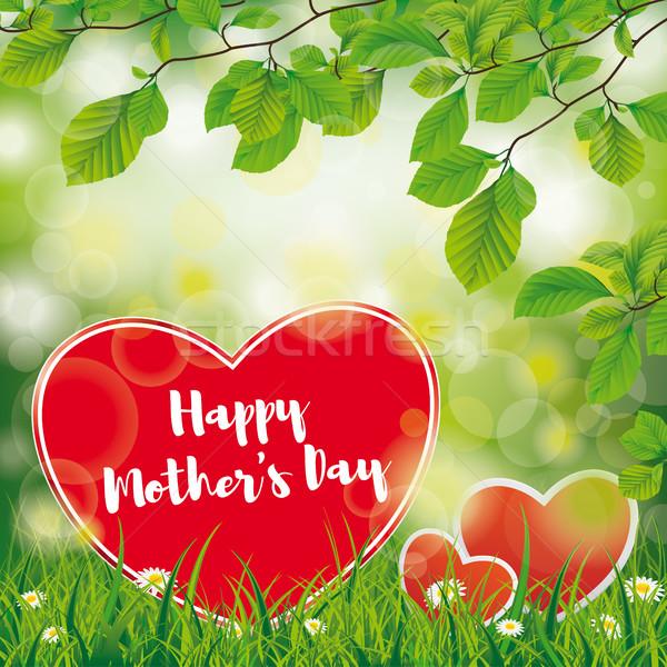Mothers Day Beech Twigs Flowers Stock photo © limbi007