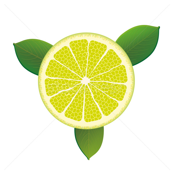 Citrus Fruit Foliage Stock photo © limbi007