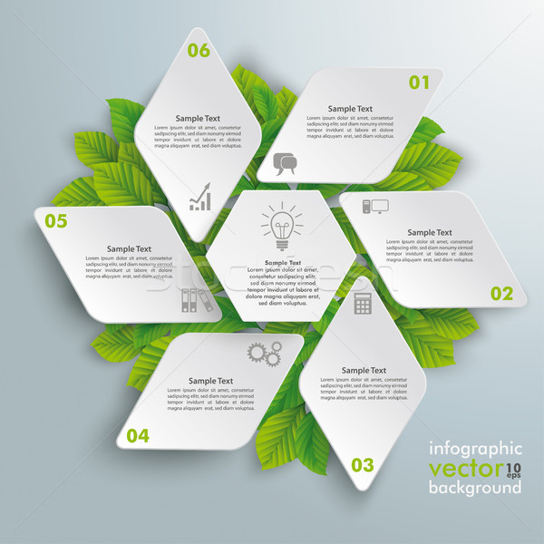 Rhombus Hexagon Eco Infographic Green Leaves Stock photo © limbi007