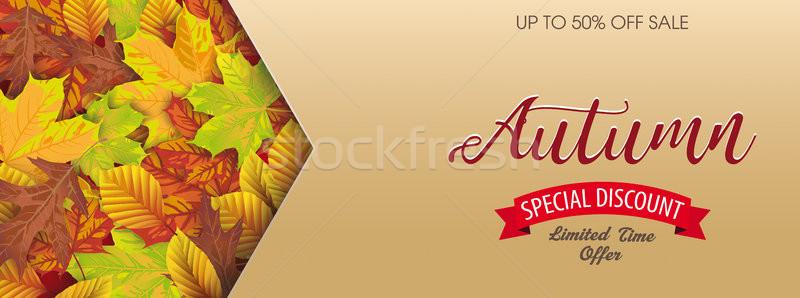 Header Autumn Sale Foliage Arrow Stock photo © limbi007