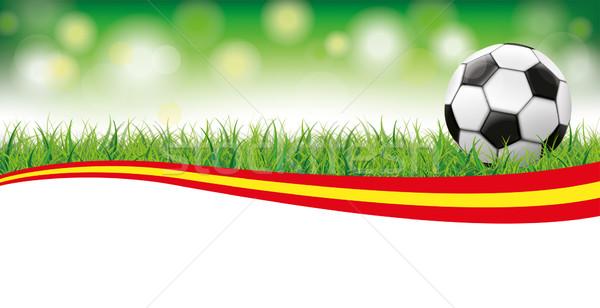 Voetbal gras bokeh Spanje klassiek Stockfoto © limbi007