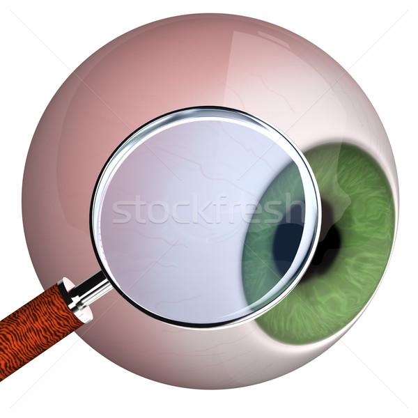 Eye With Loupe Stock photo © limbi007