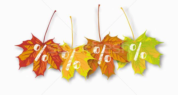 4 Maple Leaves Percents Stock photo © limbi007