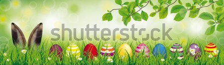 Hare Colored Nature Easter Eggs Grass Beech Twigs Header Stock photo © limbi007