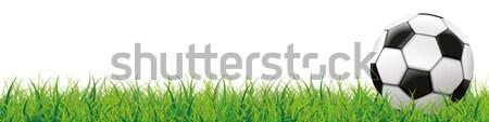 Football Grass White Background Long Header SH Stock photo © limbi007