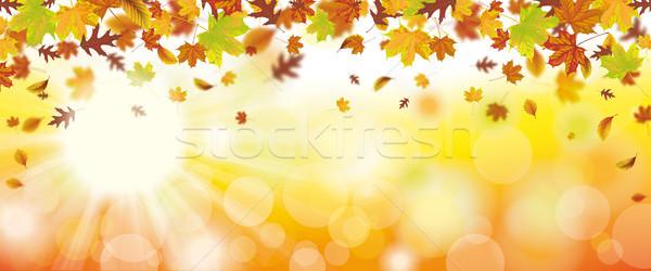 Najaar loof vallen zonnestraal bokeh Stockfoto © limbi007