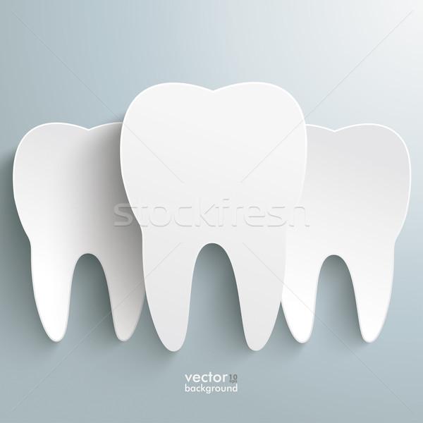 Três dentes brancos cinza eps 10 Foto stock © limbi007