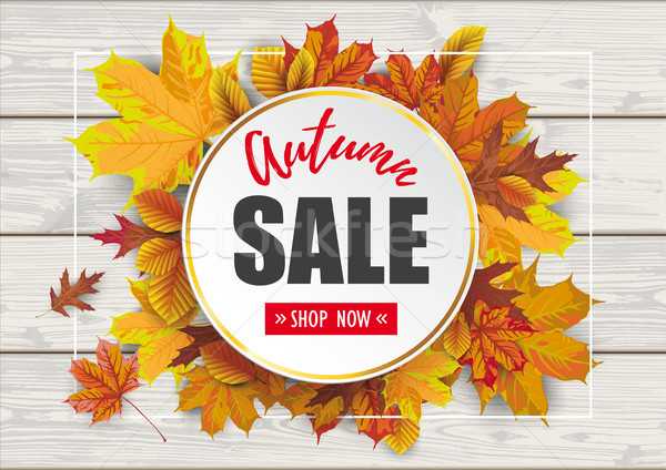 Wood Autumn Sale Foliage Golden Circle Stock photo © limbi007