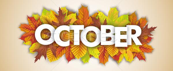 Autumn Foliage October Header Stock photo © limbi007