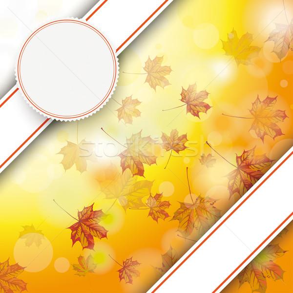Autumn Foliage Fall Bevel Double Banner Emblem Stock photo © limbi007