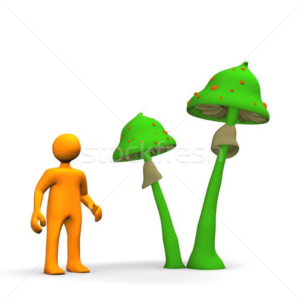 Magic Mushrooms Stock photo © limbi007