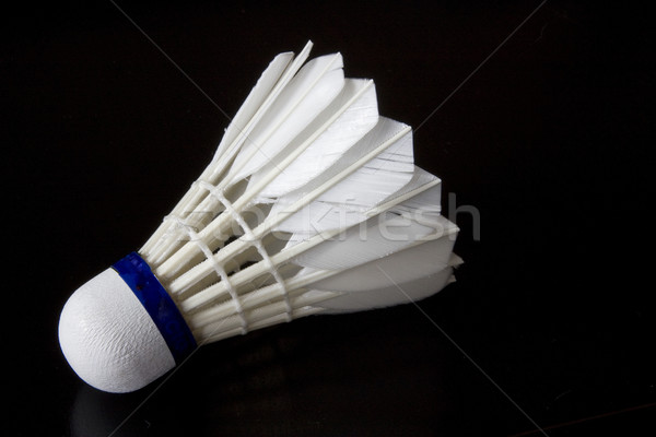 Badminton oiseau blanche fitness Photo stock © limbi007