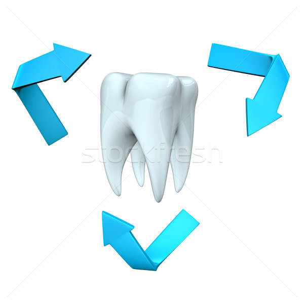 Tooth Health Stock photo © limbi007