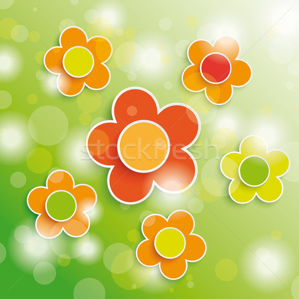 White Flower Stock photo © limbi007
