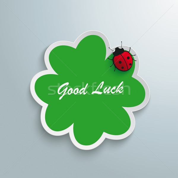 Verde shamrock bene fortuna coccinella bianco Foto d'archivio © limbi007
