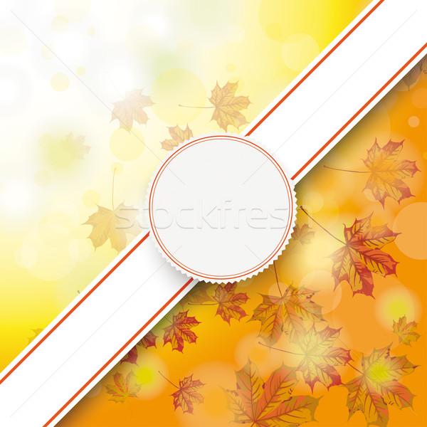 Autumn Foliage Fall Bevel Banner Emblem Stock photo © limbi007