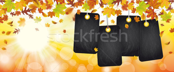 Autumn Foliage Price Stickers Header Sunbeam  Stock photo © limbi007