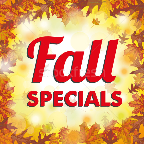 Foliage Fall Specials Stock photo © limbi007