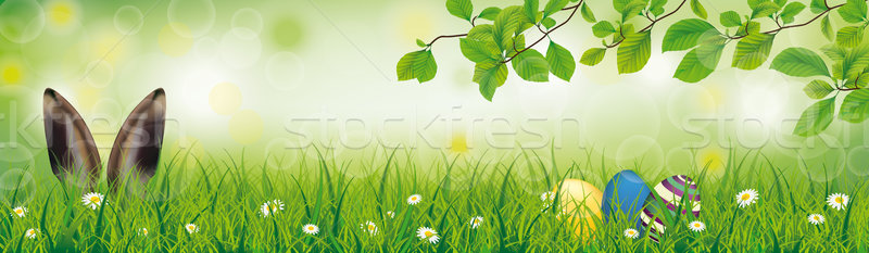 Spring Hare Easter Eggs Grass Beech Twigs Header Stock photo © limbi007