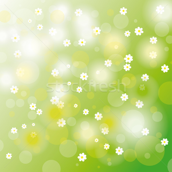 Pascua tarjeta flores blancas flores eps 10 Foto stock © limbi007