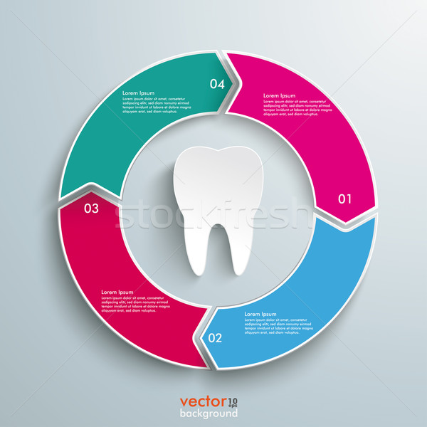 Colored Ring Cycle 4 Options Tooth Stock photo © limbi007