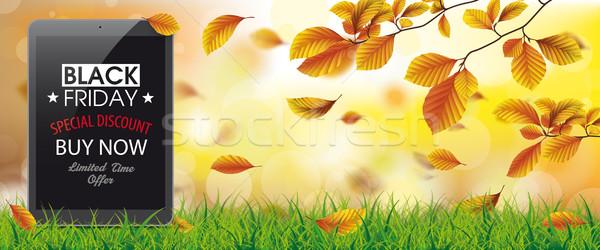 Sonbahar yeşillik çim tablet black friday bokeh Stok fotoğraf © limbi007