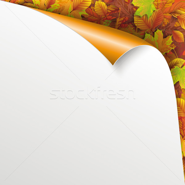 Scrolled Corner Paper Cover Autumn Foliage Stock photo © limbi007