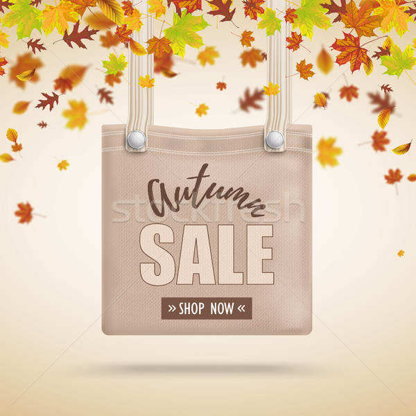 Brown Purse Bag Autumn Sale Foliage Stock photo © limbi007