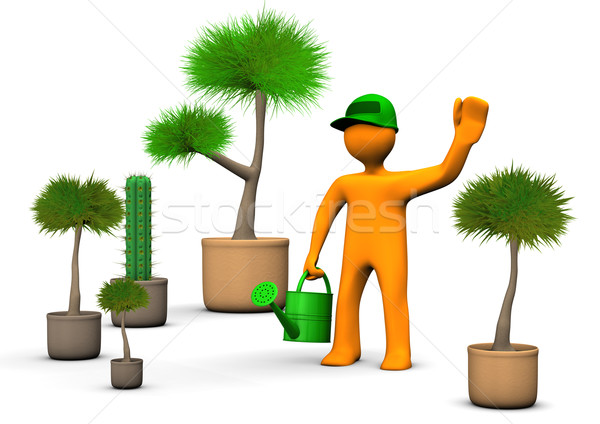 Gardener With Plants Stock photo © limbi007