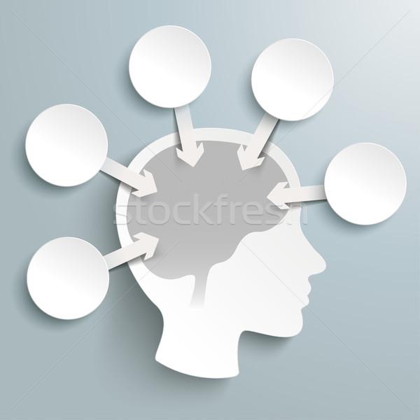 Human Head Brain 5 Circles Arrows Infographic Stock photo © limbi007
