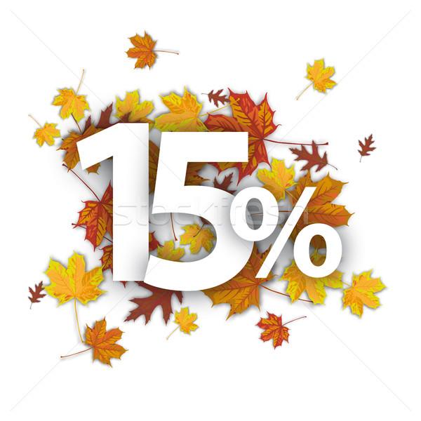 15 procent najaar loof witte eps Stockfoto © limbi007