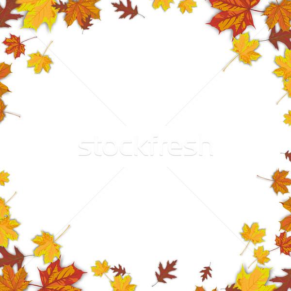 Autumn Background Foliage White Centre Stock photo © limbi007