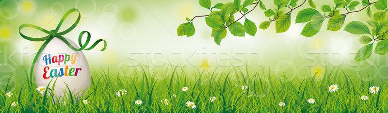 Kellemes húsvétot tojás fű fejléc bokeh eps Stock fotó © limbi007