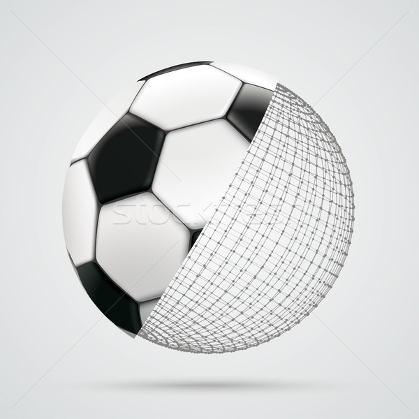 3d Sphere Connected Dots Football Stock photo © limbi007