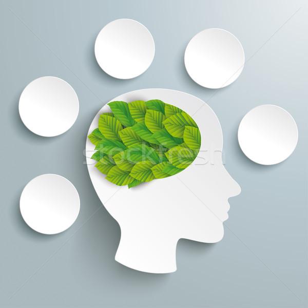 Human Head Brain Green Leaves 5 Circles Infographic Stock photo © limbi007