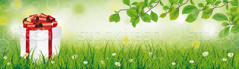 Caixa de presente primavera grama dom cartão Foto stock © limbi007