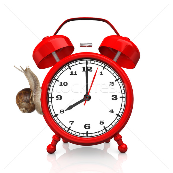 Snail Red Alarmer 8 O'Clock Stock photo © limbi007