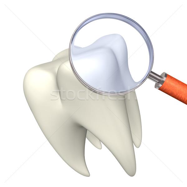 Tooth With Loupe Stock photo © limbi007