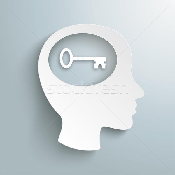 Insan kafa beyin anahtar dizayn Stok fotoğraf © limbi007