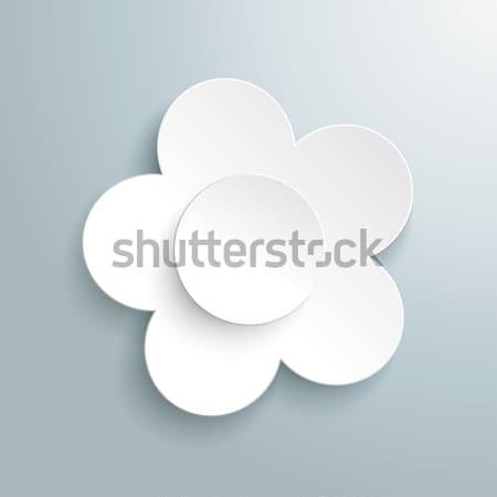 Fiore bianco grigio eps 10 vettore file Foto d'archivio © limbi007