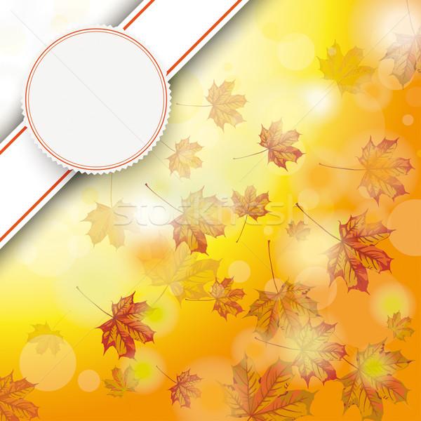 Autumn Foliage Fall Bevel Emblem Stock photo © limbi007