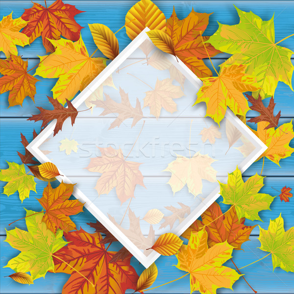 Blue Wood Autumn Foliage Frame Stock photo © limbi007
