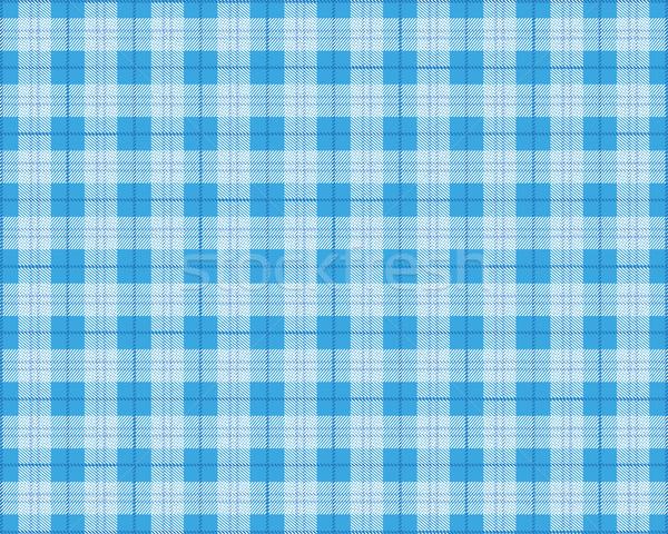 синий пикник одеяло прибыль на акцию 10 вектора файла Сток-фото © limbi007