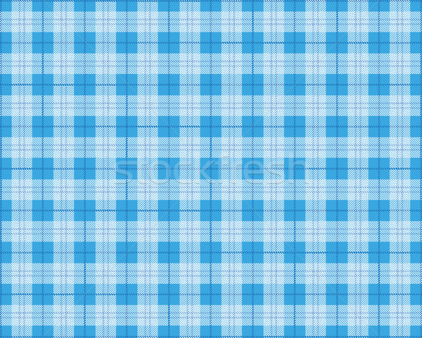 Blauw picknickdeken eps 10 vector bestand Stockfoto © limbi007