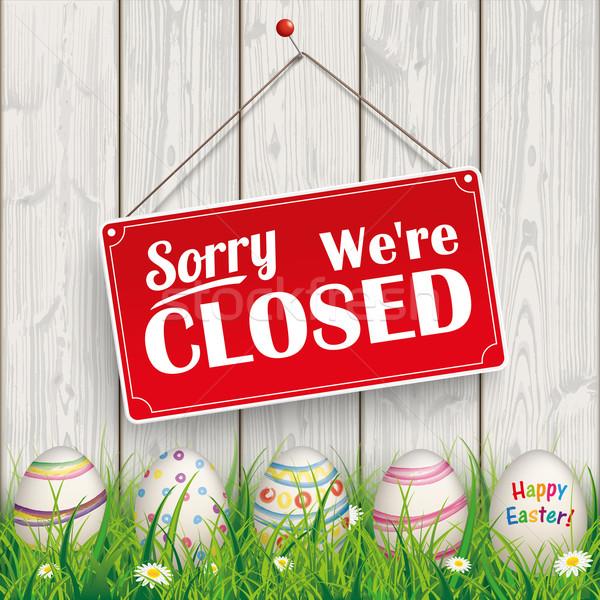 Húsvéti tojások fű fa zárva piros akasztás Stock fotó © limbi007