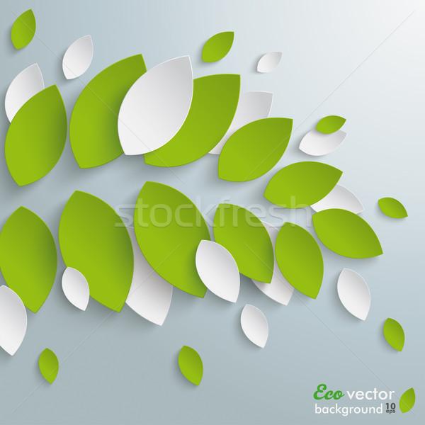 緑の葉 白 葉 グレー eps 10 ストックフォト © limbi007
