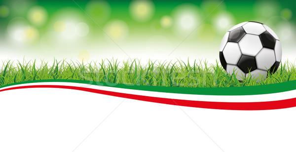 Football Grass Bokeh Header Italy Stock photo © limbi007
