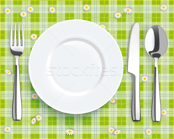 Green Picnic Blanket Plate Spoon Knife Fork Stock photo © limbi007