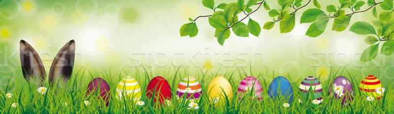 заяц пасхальных яиц трава ушки Сток-фото © limbi007